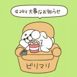#294大事なお知らせ